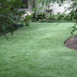 LawnPop Austin Artificial Grass 005
