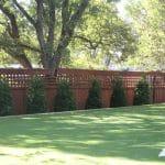 LawnPop Austin Artificial Grass 033