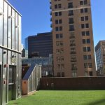 LawnPop Austin Artificial Grass 036