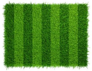 Most Realistic Artificial Grass on the Market