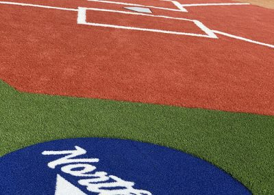 Artificial Turf and Grass Image