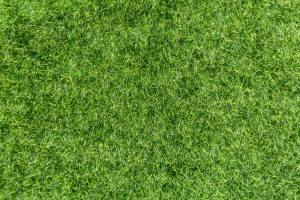 Top Surfaces for Artificial Grass