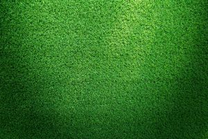 Artificial Turf Last