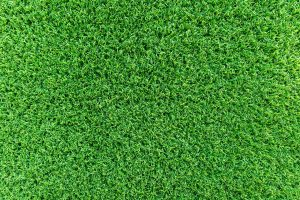 Artificial Turf vs Grass for Football Fields