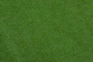 Artificial Grass vs Sod